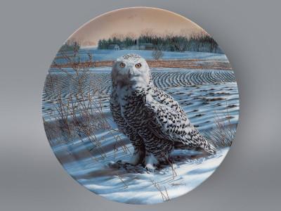 Тарелка декоративная Снежная сова Knowles