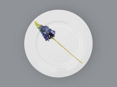 Набор столовых тарелок Clou&Classic